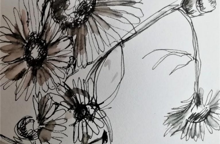 Cas Holmes: Exploring the Garden – Line Drawing